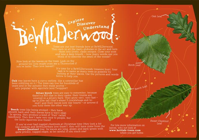 BeWILDerwood education board leaves